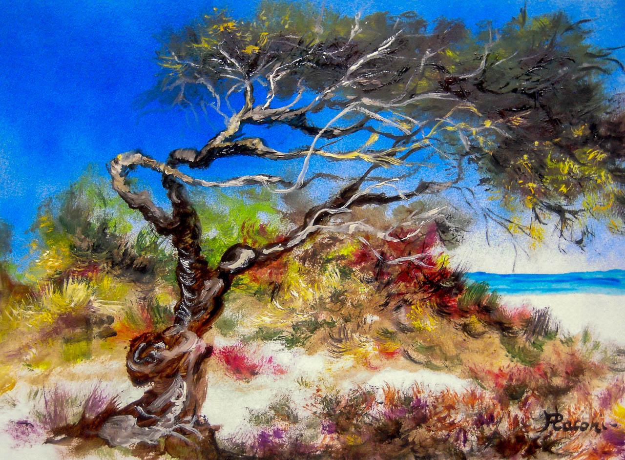 Paesaggio marino [COD. 2585] [33x24 cm] pittura ad olio