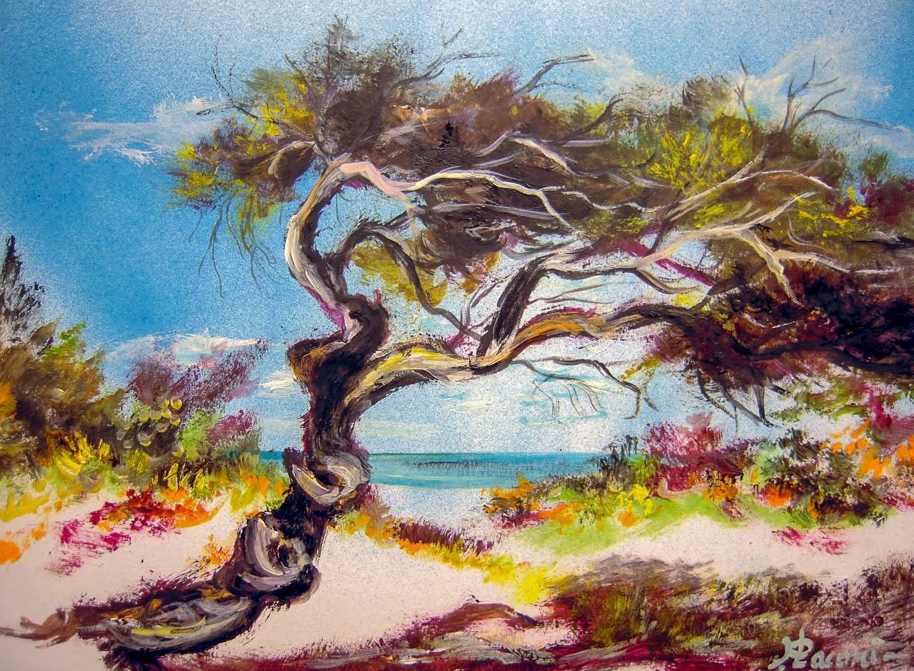 Paesaggio marino [COD. 3014] [33x24 cm] pittura ad olio