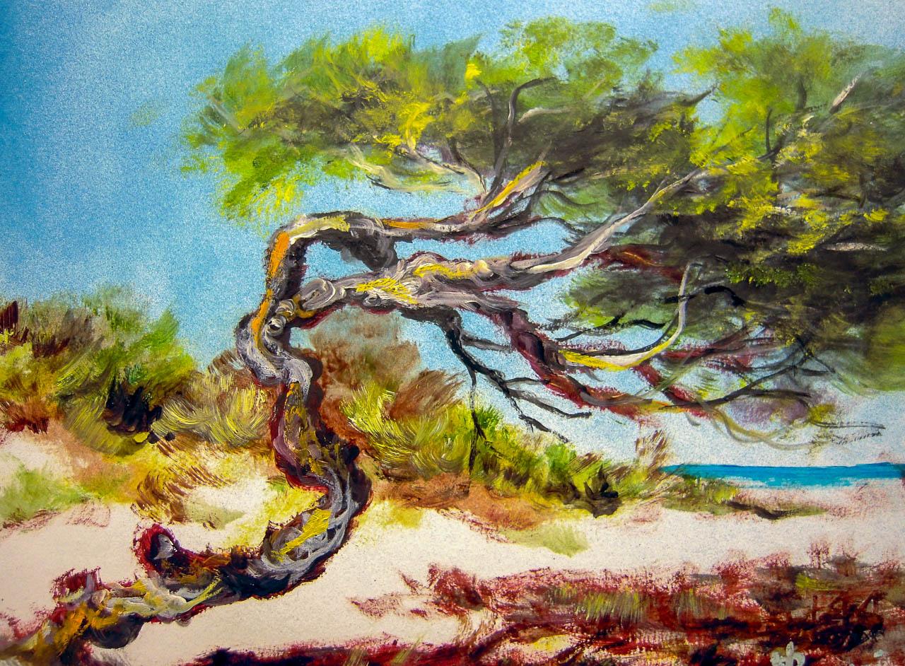 Paesaggio marino [COD. 3015] [33x24 cm] pittura ad olio