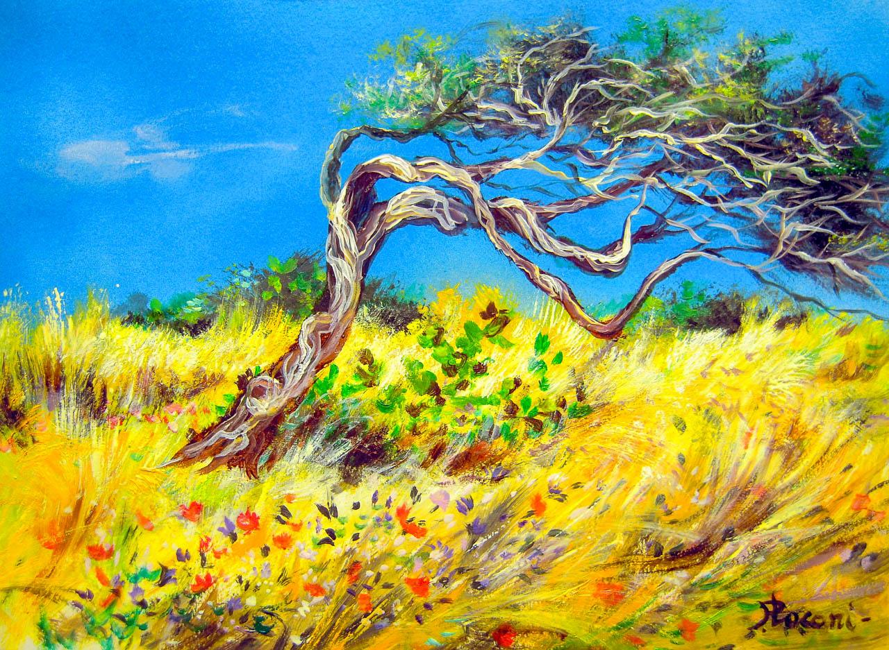 Paesaggio marino [COD. 3023] [33x24 cm] pittura ad olio